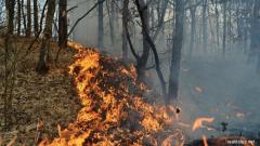 Alertă Spania: Incendiu devastator în stațiunile din Costa Blanca, provincia Alicante. Număr mare de oameni evacuaţi