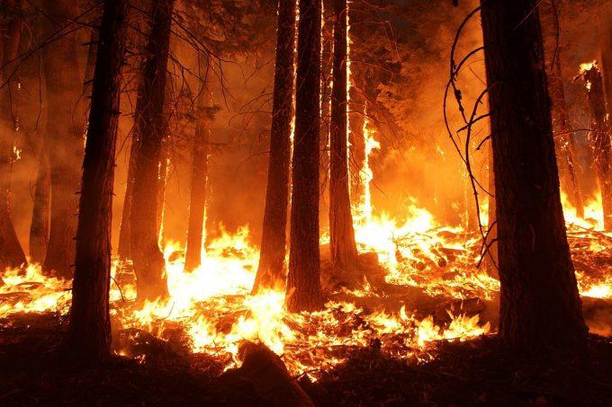 Atenționare: Regatul Spaniei – Incendii de vegetație în Insula Gran Canaria