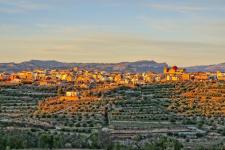 Atenționare SPANIA: Cod portocaliu de caniculă – atenţionare pentru cetăţenii români care călătoresc în această ţară (MAE)