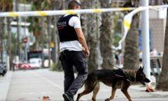 Atentate în Spania: Celula teroristă ar fi fabricat 100 de kilograme de TATP (presa)