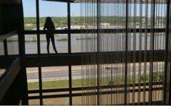 BBC: Bande infracționale est-europene obligă femei traficate, inclusiv din România, la căsătorii fictive în Marea Britanie