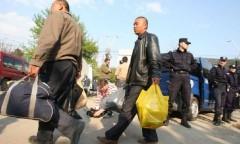 Câte persoane au solicitat azil in România, in anul 2016?
