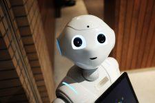 Cu ocazia Anului Nou Chinezesc, clienţii unei cafenele din Tokyo vor fi serviţi de roboţi