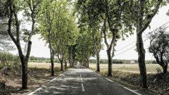 Drumurile din România sunt cele mai nesigure din Uniunea Europeană