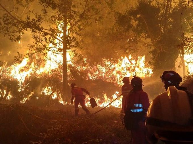 El terrorismo incendiario: Actos de terrorismo incendiario en Galicia, Asturias y Portugal