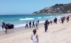 FRONTEX: Numărul migranților sosiți pe mare crește în Spania
