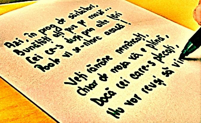 Gânduri pe versuri în Ajun de Crăciun. Poezia Lașitate de Lina Comșa Florea