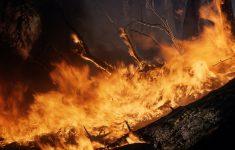Grecia: Bilanţul morţilor în urma incendiilor din apropiere de Atena a ajuns la 74