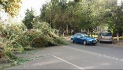 IGSU: 145 de victime, dintre care 8 decedate și 137 rănite, din cauza furtunii din vestul țării