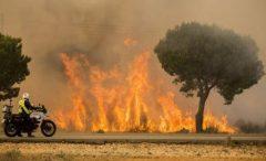 Incendiile de vegetație din Spania din acest an au mistuit aproape 64.000 de hectare de terenuri