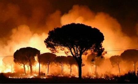 Incendiu într-un parc natural din Spania: Cel puțin 1.500 de persoane evacuate