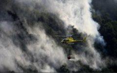 Incendiul din provincia spaniolă Leon a fost stins, 8.000 de hectare de pădure distruse