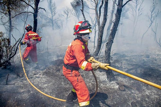 Más de 700 militares en la extinción de cuatro grandes incendios forestales simultáneos