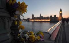 Muere la arquitecta rumana que cayó al río Támesis en el atentado de Londres