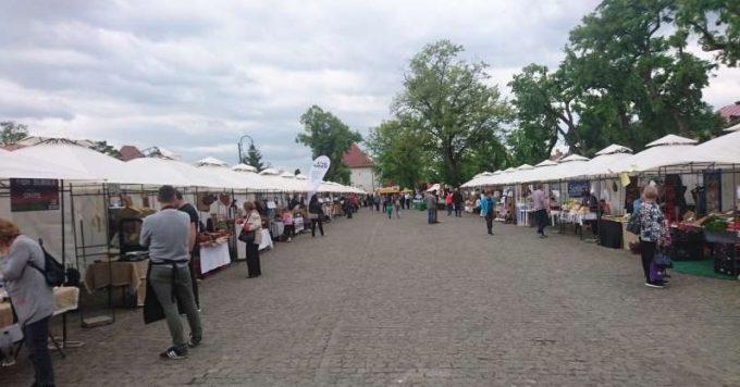 Mureş: Singurul produs lactat de origine protejată şi unicul productor de rabarbură din România, la Târgul Cetăţii