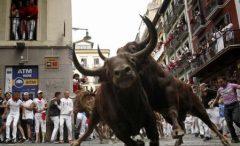 O persoană a fost spitalizată, după a cincea cursă cu tauri de la Pamplona