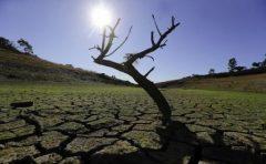 Peste 15.000 de oameni de știință lansează un semnal de alarmă cu privire la starea planetei