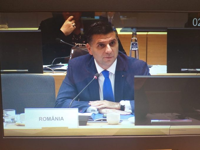 Petrescu (MCSI): Nu cred în programe dedicate Diasporei; Când se vor întoarce românii în țară?