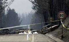 VIDEO: Portugalia: 62 de morți în incendiile de pădure din centrul țării; au fost decretate trei zile de doliu
