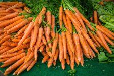Protest cu eugenii, morcovi, făină şi ulei în faţa Sălii Palatului