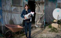 Reportaj The Observer: Mii de românce lucrează în condiții de sclavie în Sicilia