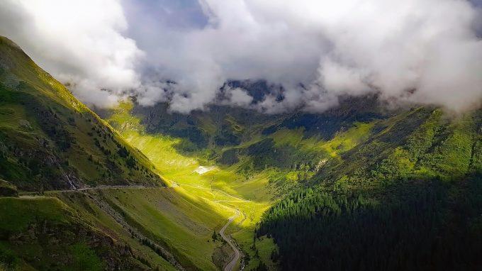 Sălaj: 185.000 de puieţi plantaţi de Direcţia Silvică, în programul de regenerare a pădurilor pentru 2019