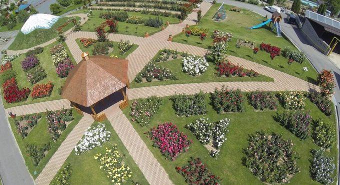 """Sălaj: """"Grădina bunicii"""", cu plante aromatice şi medicinale – la Grădina Botanică din Jibou"""