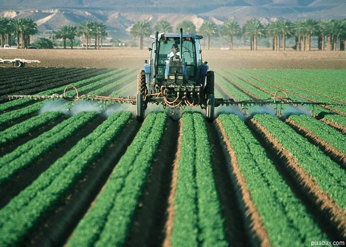S-a dat startul la primele sesiuni de primire a proiectelor prin PNDR 2014-2020. Pachetul cuprinde 5 măsuri de finanțare pentru sectorul agricol