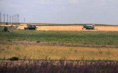 Terenurile agricole lucrate ar putea fi scutite de la plata impozitului local (proiect)