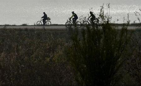 Tineri români și străini vor încerca să facă turul Deltei Dunării pe bicicletă