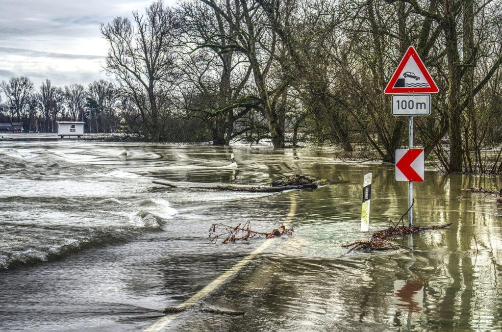 Anul 2021 trebuie să fie anul al acţiunii pentru combaterea schimbărilor climatice (ONU)