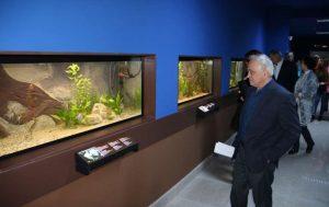 Bihor: Cel mai mare vivariu din ţară, inaugurat la Muzeul Ţării Crişurilor