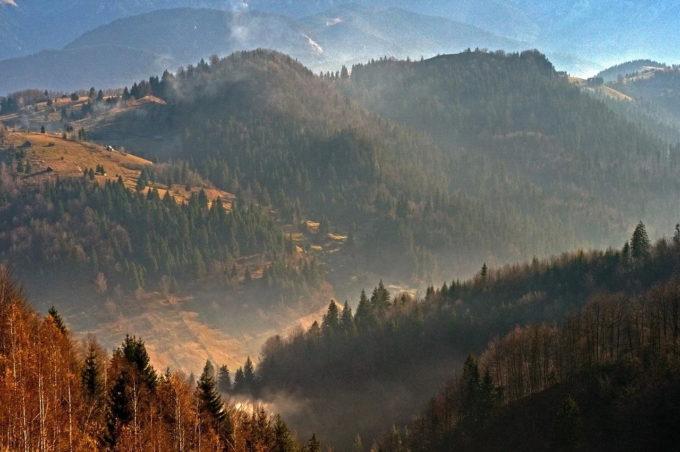 Bihor: Film educativ despre destinaţia de ecoturism Pădurea Craiului, realizat de artistul Mihai Moiceanu