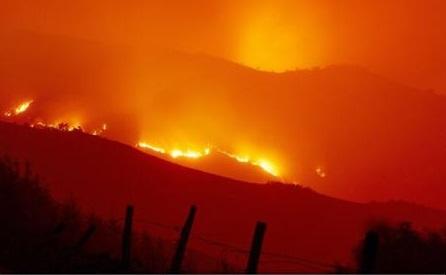 Bilanțul în urma incendiilor din Portugalia și Spania a ajuns la 45 de morți