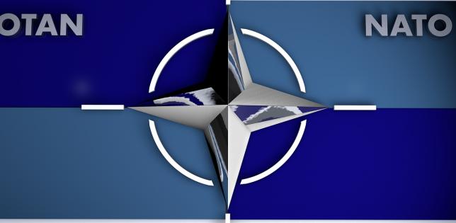 Ciucă: Acceptarea României ca membră NATO - bornă istorică ce a consfinţit integrarea în rândul democraţiilor occidentale