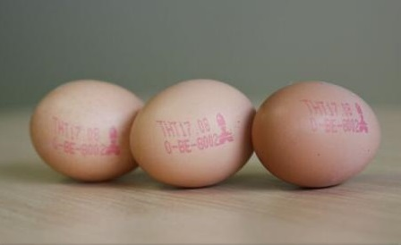 Comisia Europeană: 15 state din UE, alături de Elveția și Hong Kong, afectate de scandalul ouălor contaminate cu insecticid