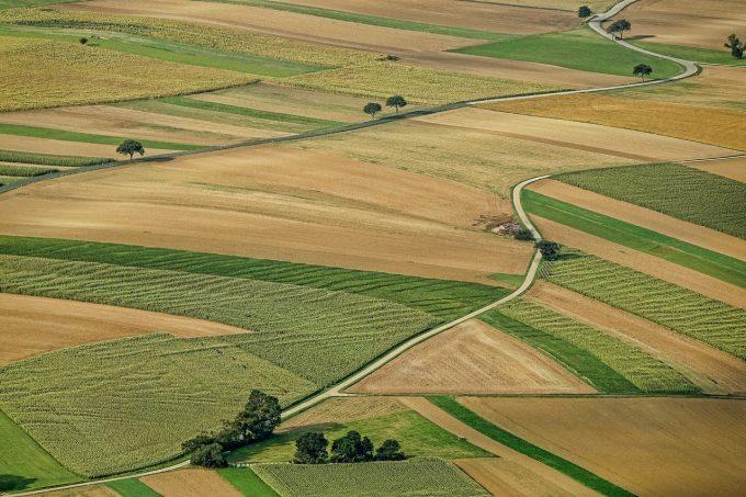 Daea, despre vânzarea terenurilor către străini: Categoriile de preemptori vor avea o logică de interes statal