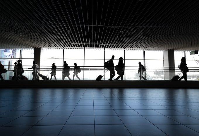 Danemarca - O companie aeriană ar putea plăti despăgubiri unui câine după ce zborul său a fost anulat