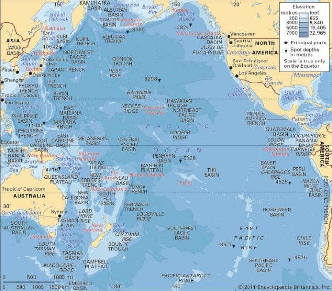 Insulele mici s-ar putea adapta în mod natural la creşterea nivelului apelor (studiu)