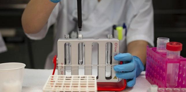 La intrarea în România, obligativitatea prezentării unui test negativ RT-PCR pentru SARS-CoV-2