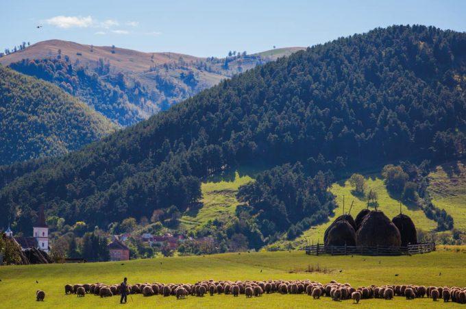 Mărginimea Sibiului a fost inclusă în lista celor mai bune destinaţii europene pentru detoxifiere digitală