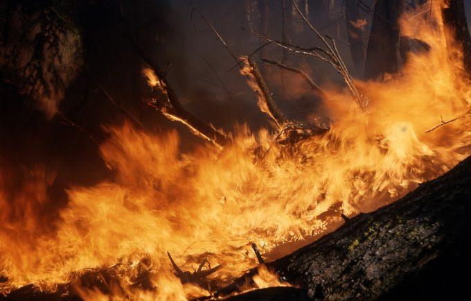 Meleşcanu: Nu există niciun indiciu că cetăţeni români ar fi suferit sau ar fi decedat în incendiile din Grecia