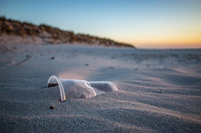 Oamenii de ştiinţă spun că impactul poluării cu plastic ar putea fi ireversibil