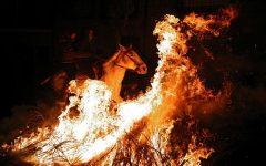 Ritual controversat în cadrul unui festival spaniol de 500 de ani. Vezi detalii