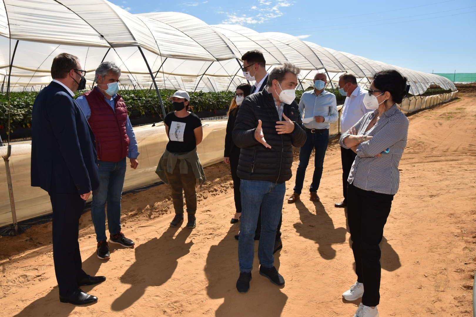 Secretarul de stat Oana Ursache împreună cu secretarul general adjunct al Guvernului României au vizitat două ferme din Huelva 1