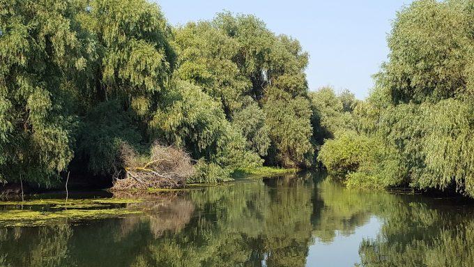 Sit UNESCO - Delta Dunării poate fi explorată virtual pe Google Maps