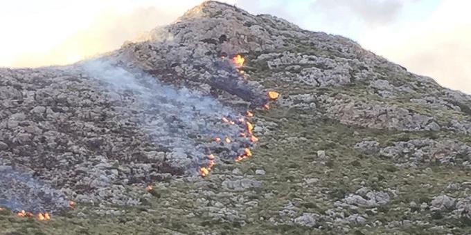 Spania: Incendii în Mallorca - 60 de locuinţe au fost evacuate