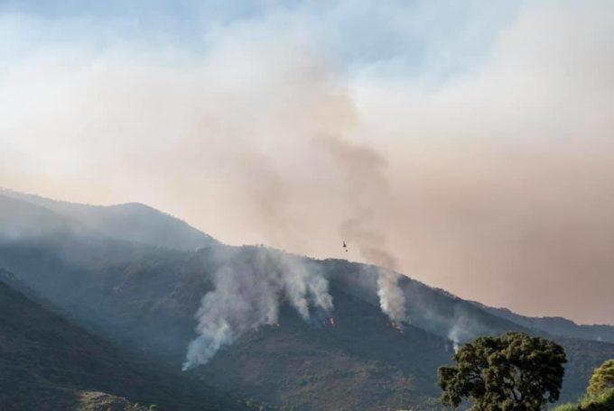Spania: Lupta cu incendiul din zona Malaga, care a ars 7.400 de hectare, a fost reluată