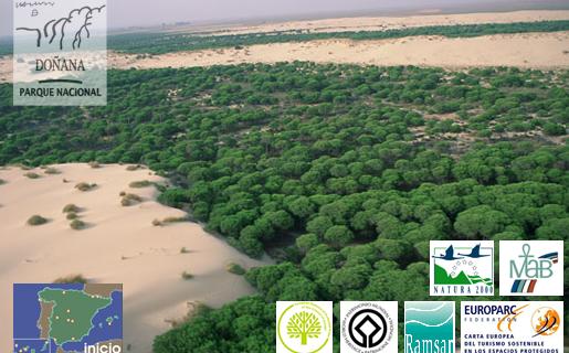 Spania trebuie să depună mai multe eforturi în viitor pentru a proteja rezervaţia naturală Coto de Donana