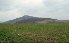 Tulcea: Dealul Consul, prima rezervație naturală din România, inclus într-un circuit turistic